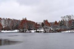 阴沉的冷的10月天在秋天公园 免版税库存图片