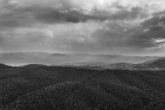 阴沉的天空和森林风景 免版税库存照片