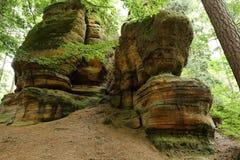 沉积的岩石在有可看见的层数的森林 免版税库存图片