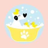 沐浴与橡胶鸭子的狗 库存照片