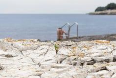 沐浴在与梯子的海多岩石的海滩的赤裸妇女 免版税图库摄影