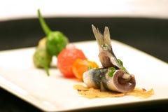 沙丁鱼五颜六色的盘用西红柿, Padrà ³ n以子弹密击 免版税图库摄影