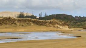 沙丘、树和小河:九十个英里海滩,新西兰 库存图片