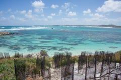 沙丘保护和珊瑚礁 库存图片