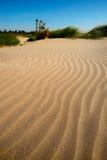 沙丘动态上限沙子 图库摄影