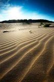 沙丘动态上限沙子 免版税库存图片