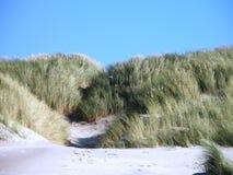 沙丘北海海岛 免版税库存照片