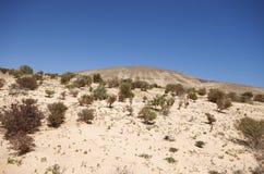 沙丘和山在Sotavento附近在Jandia peninsul靠岸 图库摄影