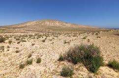 沙丘和山在Sotavento附近在Jandia peninsul靠岸 库存图片