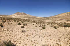 沙丘和山在Sotavento附近在Jandia peninsul靠岸 库存照片