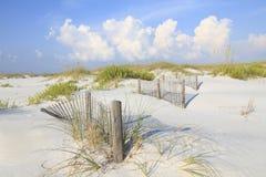 沙丘和海燕麦在一个原始佛罗里达海滩 免版税图库摄影