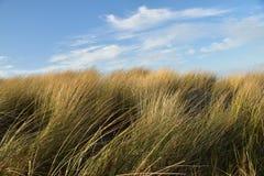 沙丘和蓝天摘要背景 免版税库存照片