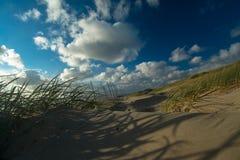 沙丘在北荷兰省 库存照片
