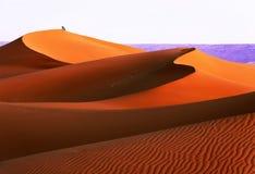 沙丘在撒哈拉大沙漠,摩洛哥 库存图片