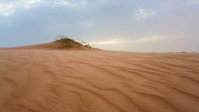沙丘在毛里塔尼亚 免版税库存图片