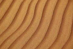 沙丘在沙漠 免版税图库摄影