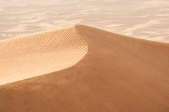 沙丘在沙漠 免版税库存图片