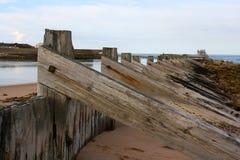 沙丘在海滩的保护措施 库存照片
