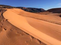 沙丘在珊瑚桃红色沙丘国家公园 库存照片