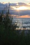 沙丘在立陶宛,年2012年 免版税库存图片