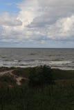 沙丘在立陶宛,年2012年 库存照片