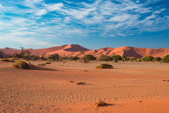 沙丘在纳米比亚沙漠在黎明, roadtrip在美妙的Namib Naukluft国家公园,旅行目的地在纳米比亚, Afr 库存图片