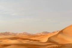 沙丘在阿曼沙漠(阿曼) 免版税库存照片