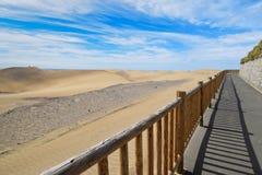 沙丘在Maspalomas canaria gran 免版税图库摄影
