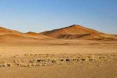 沙丘在Sossusvlei,纳米比亚 免版税图库摄影