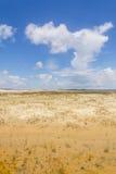 沙丘在Tavare市 免版税库存照片