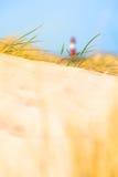 沙丘天际 库存照片
