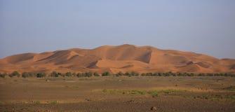 沙丘尔格Chebbi,撒哈拉大沙漠 免版税图库摄影