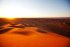 沙丘展望期kosa kurshskaya俄国沙子跨步舒展 免版税图库摄影
