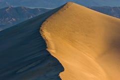 沙丘平面的豆科灌木沙子日出 免版税库存图片
