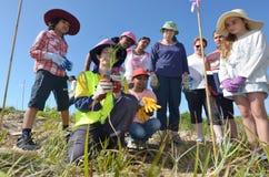 沙丘恢复在英属黄金海岸昆士兰澳大利亚 免版税库存照片