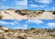 沙丘拼贴画在Bunbury西澳州附近的 免版税库存图片