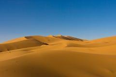 沙丘摩洛哥人撒哈拉大沙漠 库存照片