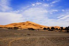 沙丘撒哈拉大沙漠 免版税图库摄影