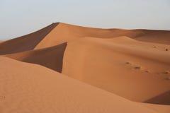 沙丘撒哈拉大沙漠 库存照片