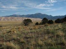 沙丘极大的国家公园沙子 免版税图库摄影