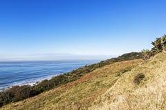 沙丘植被和遥远的海洋和蓝色沿海地平线 免版税库存图片