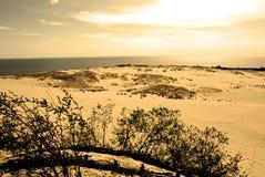 沙丘横向 免版税库存图片