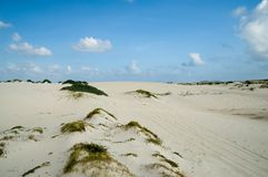 沙丘沙子 免版税库存照片