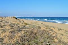 沙丘海滩  免版税库存照片