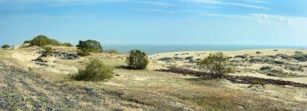 沙丘的风景 免版税图库摄影