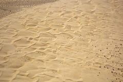 沙丘皇家沙子 图库摄影