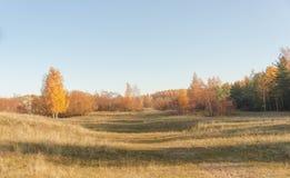 沙丘看法在10月早晨 免版税库存照片