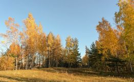 沙丘看法在10月早晨 库存图片