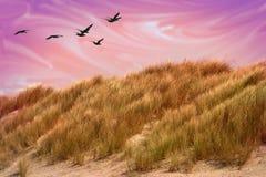 沙丘神秘的沙子 库存图片