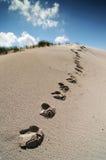 沙丘脚步 免版税库存图片